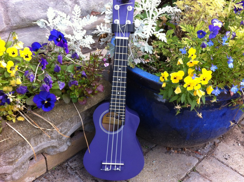 uke for newsletter