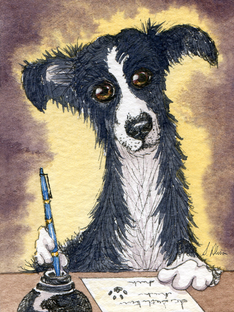 steadfastly loyal, bcs make excellent pen dogs